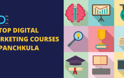 5 Best Digital Marketing Courses in Panchkula with Course Details